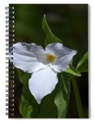 Large-flower Trillium Dspf279 Spiral Notebook