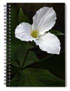 Large Flowered Trillium Spiral Notebook