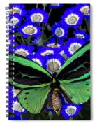 Large Green Butterfly Spiral Notebook