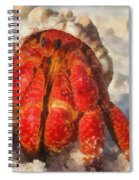 Large Hermit Crab On The Beach Spiral Notebook
