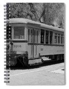 Lary 1201 2 Spiral Notebook
