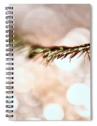 Lashes Spiral Notebook