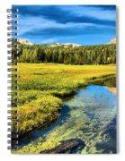 Lassen Reflections Spiral Notebook