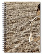 Lasso And Hat On Fence Post Spiral Notebook