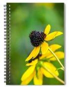 Last Blooms Of Summer Spiral Notebook