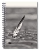 Last Days Of Summer In Black And White Spiral Notebook