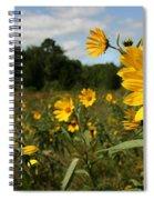 Last Days Of Summer Spiral Notebook
