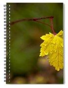 Last Leaf Spiral Notebook