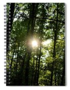 Last Light In The Forest Spiral Notebook