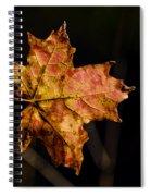 Last Maple Leaf Spiral Notebook