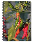 Last Of The Peppers Spiral Notebook