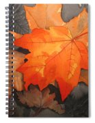 Last Out Spiral Notebook