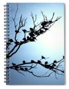 Lasy Birds Spiral Notebook