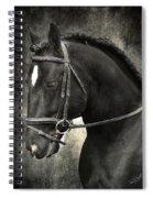 Latcho's Shadow  Spiral Notebook
