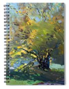 Late Afternoon By The River Spiral Notebook