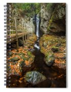 Late Autumn At The Fall Of Song Spiral Notebook