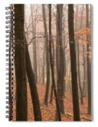 Late Autumn Beech Spiral Notebook