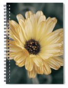 Late Bloomer Spiral Notebook