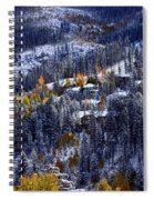 Late Fall In Vail Spiral Notebook