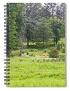 Late Summer By The Pond Spiral Notebook
