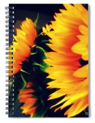 Late Summer Greetings Spiral Notebook