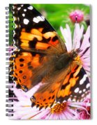 Late Summer Painted Lady Spiral Notebook