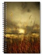 Late Summer Sun Through The High Grass Spiral Notebook