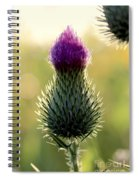 Late Summer Thistle Spiral Notebook
