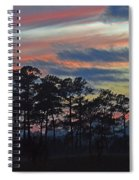 Late Sunset Trees In The Mist Spiral Notebook