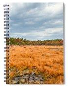 Laurel Summit State Park Bog Spiral Notebook