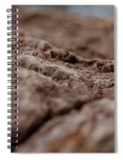 Lava Rock Landscape II Spiral Notebook