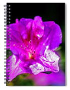 Lavendar Beauty Spiral Notebook