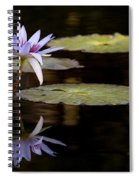 Lavendar Reflections In The Lake Spiral Notebook