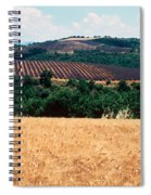 Lavender And Corn Fields In Summer Spiral Notebook