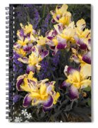 Lavender And Irises Spiral Notebook