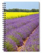 Lavender And Mustard Spiral Notebook