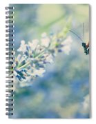 Lavender And The Butterfly Spiral Notebook