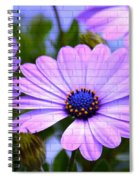 Lavender Beauties Spiral Notebook