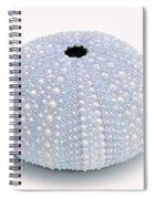 Blue Sea Urchin White Spiral Notebook