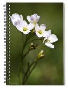 Lavender Blush Cuckoo Flower Spiral Notebook