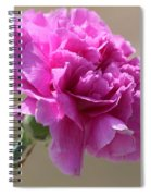 Lavender Carnation Spiral Notebook