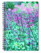 Lavender Color Flowers Spiral Notebook