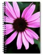 Lavender Daisy Spiral Notebook