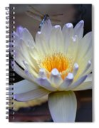 Lavender Edged Lotus Spiral Notebook