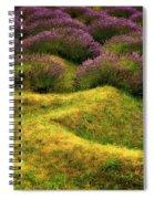 Lavender Fields Spiral Notebook
