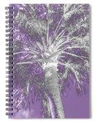 Lavender Glow Palm Tree Myakka River State Park Usa Spiral Notebook