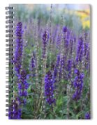 Lavender In The City Park Spiral Notebook