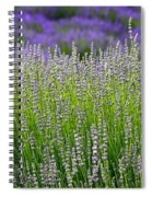 Lavender Layers Spiral Notebook