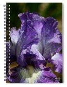 Lavender Lust Spiral Notebook