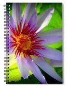 Lavender Passion Spiral Notebook